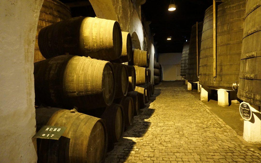 El vino envejece y enriquece su aroma
