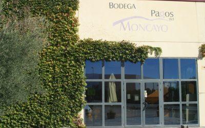 Bodega: Pagos del Moncayo
